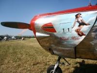 vfrmeeting-2012-andrea-colombo175